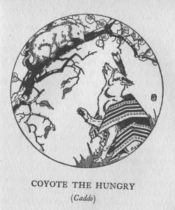 coyoteopossum